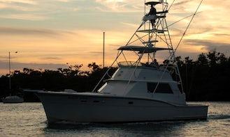 Fishing Charters On 45' Sport Fisherman In Miami, FL!