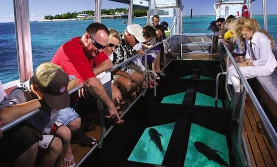 Enjoy Glass Bottom Boat Trip In South Sinai Governorate, Egypt