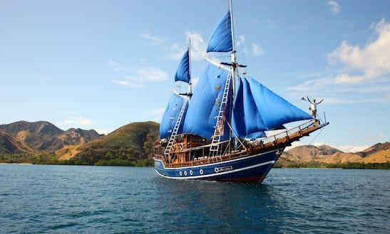 Stunning Schooner Sailing Charter