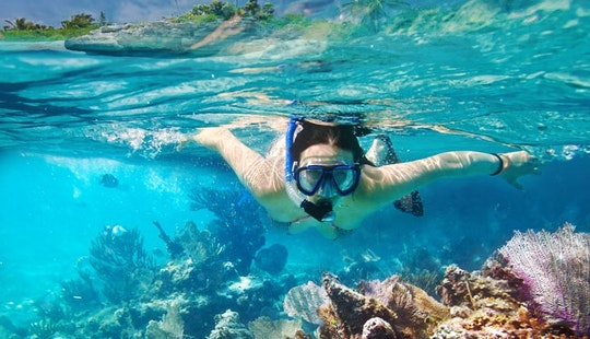 Try Our Snorkeling Tour In Kuta Selatan, Bali