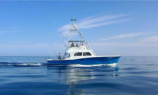 Go Fishing in Miami, Florida on 50' Custom Carolina Sportfishing Boat