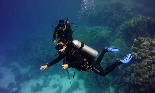 Enjoy Diving Courses In Gdańsk, Poland