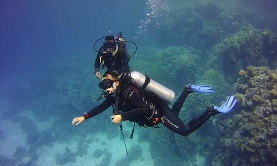 Enjoy Diving Courses In Gdańsk, Poland