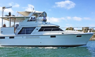 47ft Carver Motor Yacht Captained Charter in San Diego