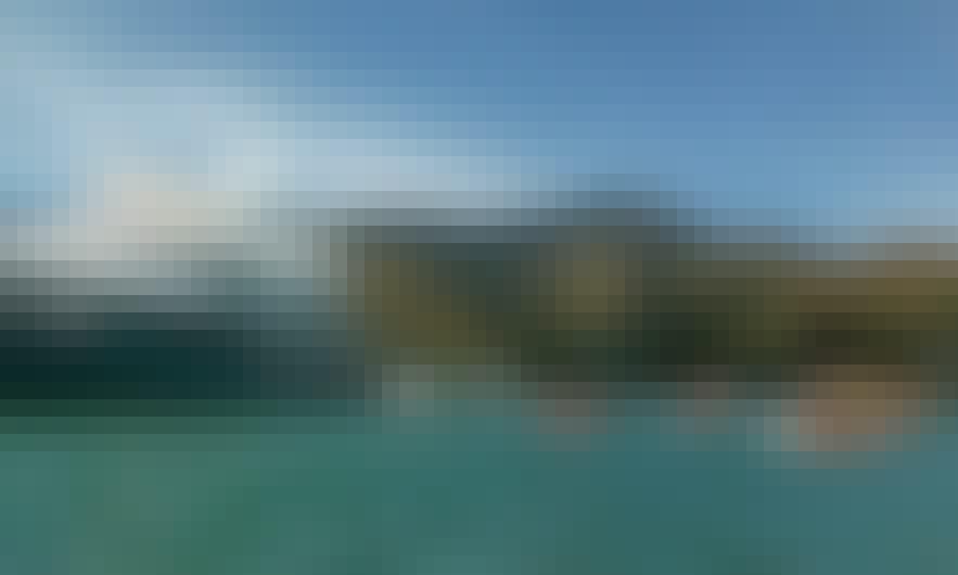 Cruise Ship Passenger Trips in Akaroa, New Zealand