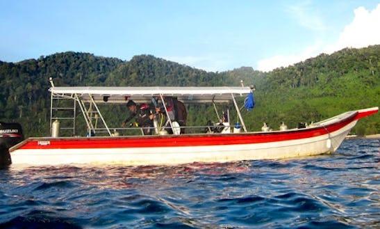 Enjoy Diving Trips & Courses In Mersing, Pahang, Malaysia