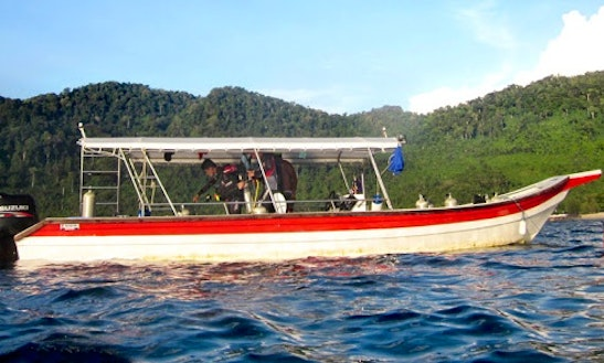 Enjoy Diving Trips & Courses In Mersing, Pahang