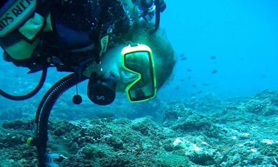 Enjoy Diving Trips In Utende, Tanzania