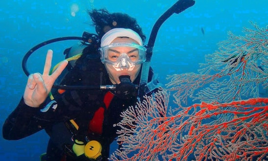 Enjoy Diving Trips And Courses In Jakarta, Indonesia