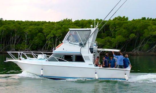 Charter Fishing In Port Douglas, Queensland On 34' Sport Fisherman