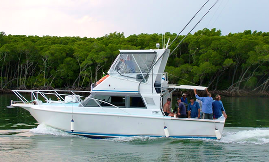 Charter Fishing In Port Douglas, Queensland On 34' Sport Fisherman