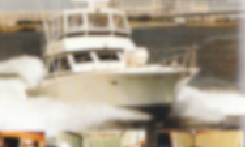 "Fishing Charter On 46ft ""Atlantic Star"" Luxury Viking Yacht In Atlantic City, New Jersey"