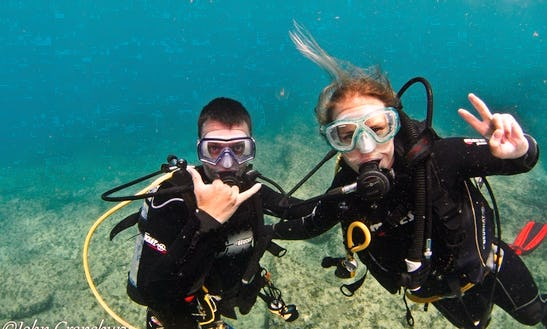 Enjoy Diving Trips & Courses From Brisbane