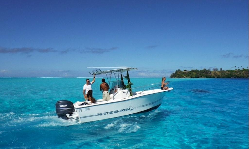 Bora bora fishing charter on 22ft sylsea white shark for Bora bora fish