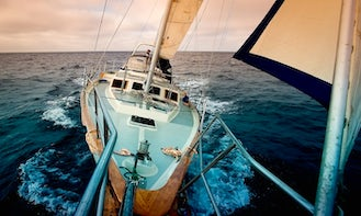 Charter 55ft Irwin Sailboat in Marina del Rey, California. PLEASE READ THE PRICES UNDER