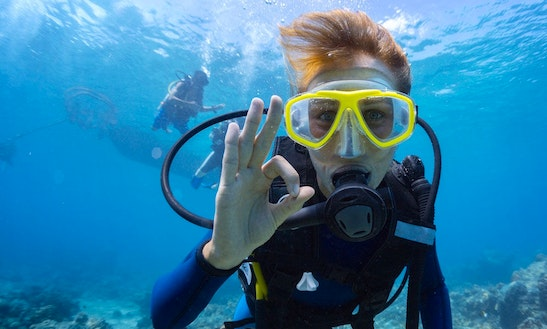 Enjoy Diving Courses In Canarias, Spain