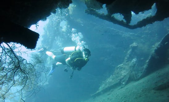 Enjoy Diving Trips In Bali, Indonesia