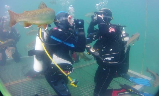 Enjoy Diving Trips And Courses In Vordernberg, Austria