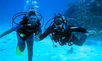 Diving Trips and Courses in Ifaty, Madagascar