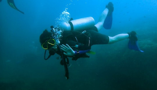 Padi Team Diving Trips And Courses At Tioman Island, Pahang On Bj3 Aka Marlin