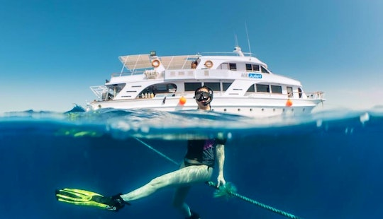 Diving Trips And Courses In South Sinai, Egypt