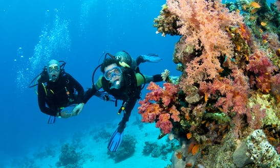 The Most Adventurous Water Sports! Diving In Malvan