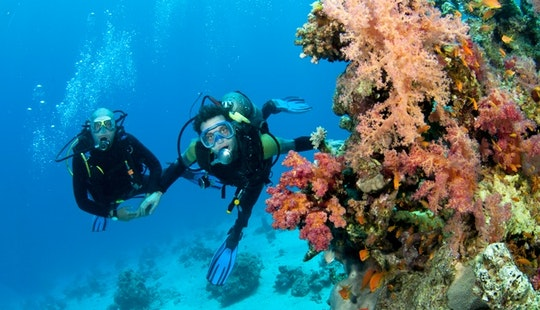 The Most Adventurous Water Sports! Diving In Malvan