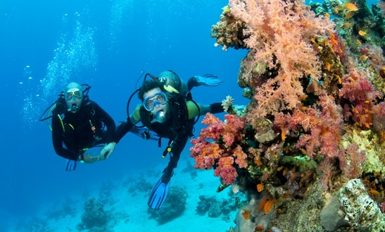 Enjoy Diving In Malvan, Maharashtra