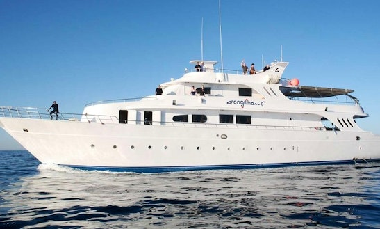 Charter 118' Power Mega Yacht In Safaga, Egypt