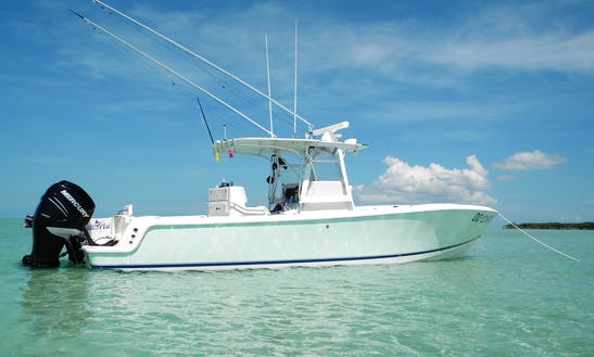 Key West Offshore Fishing Charter On 34' Sea Vee Boat