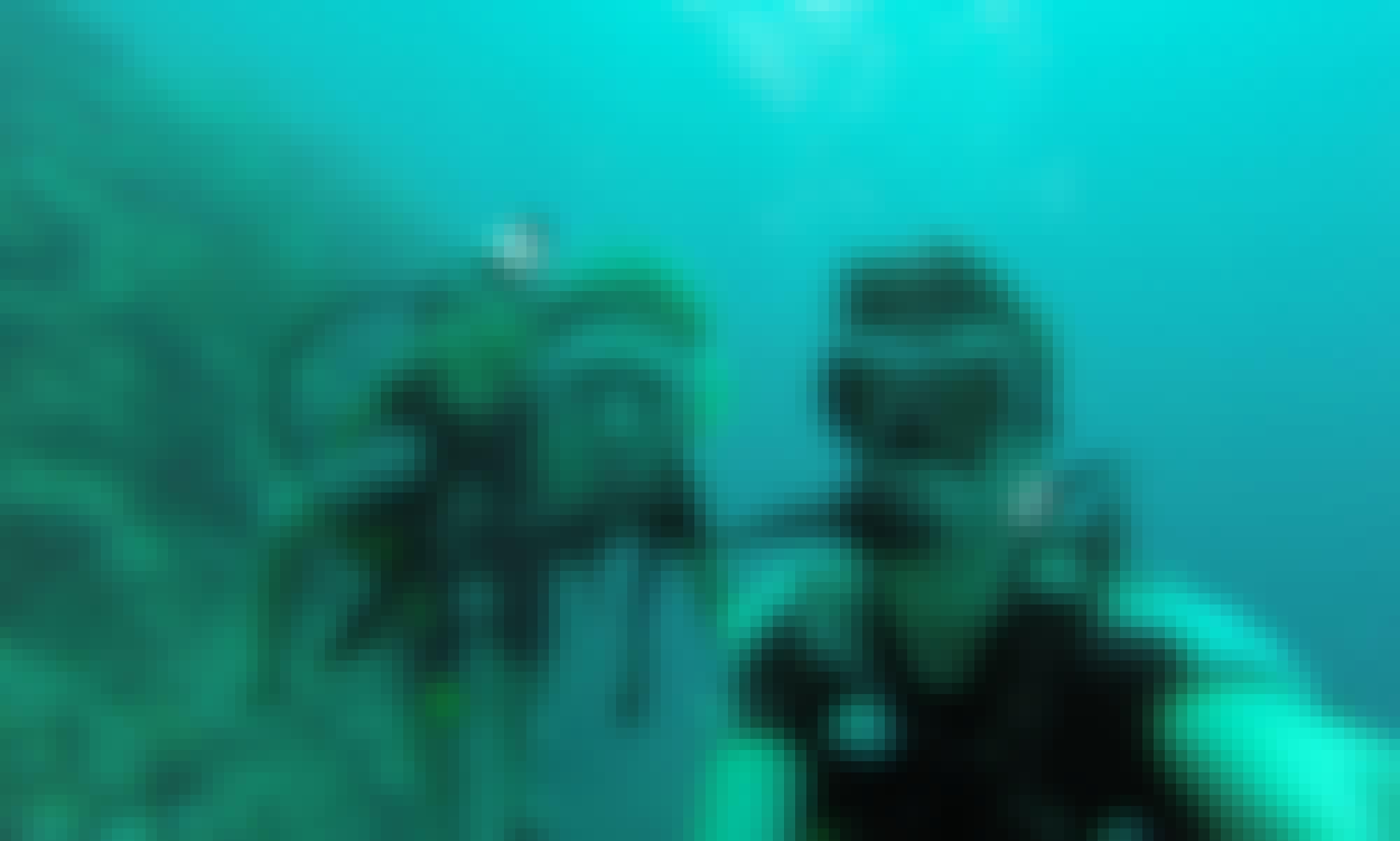 Diving Courses in Gerokgak, Bali