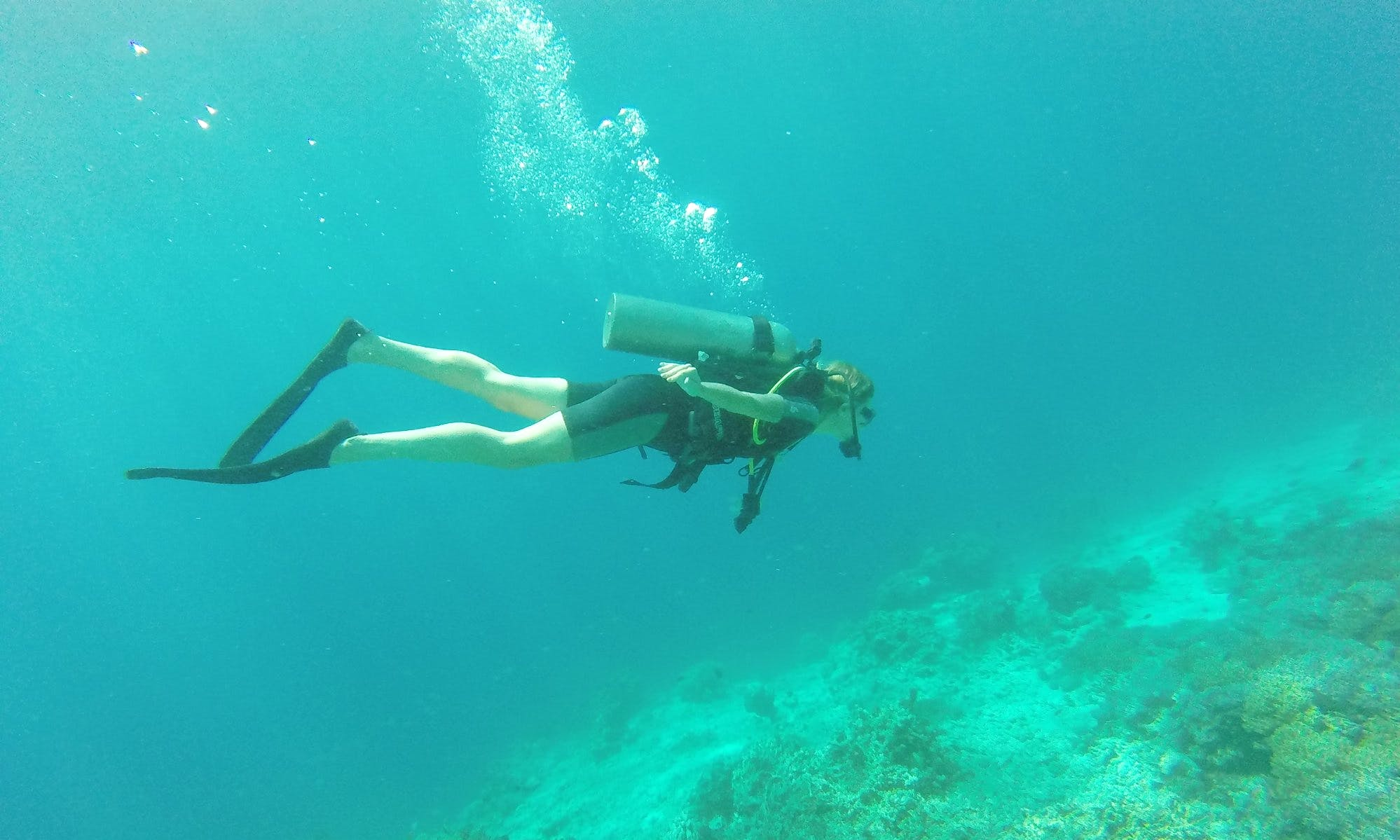 Diving Courses in Gerokgak, Bali