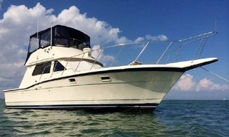 Fishing Charter on Hatteras 36 with Twin Diesel Engine