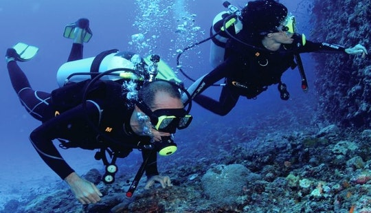 Enjoy Diving Trips At Mafia Island, Tanzania