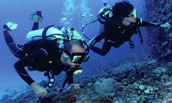 Enjoy Diving Trips At Mafia Island, Tanzania