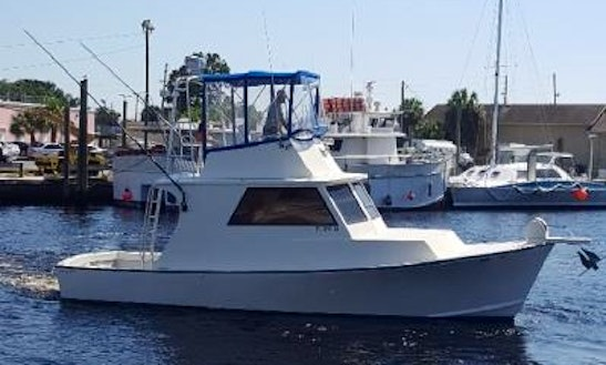 Private deep sea fishing charter in clearwater florida for Fishing charters clearwater fl