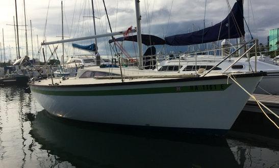 Moana  Private Sailing Charters