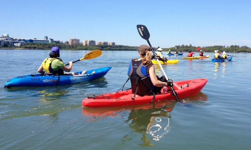 Hire a Single Kayak in South Wales, Australia