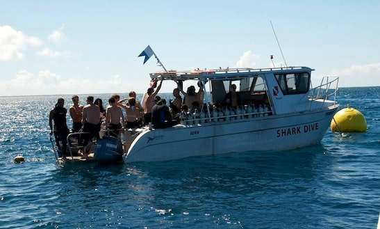 Enjoy The Perfect Scuba Diving Vacation In Pacific Harbour, Fiji