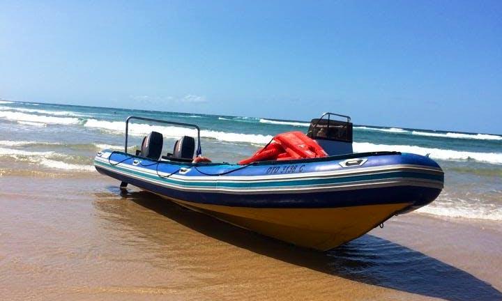Enjoy Diving Trips and Courses in Umkomaas, KwaZulu-Natal