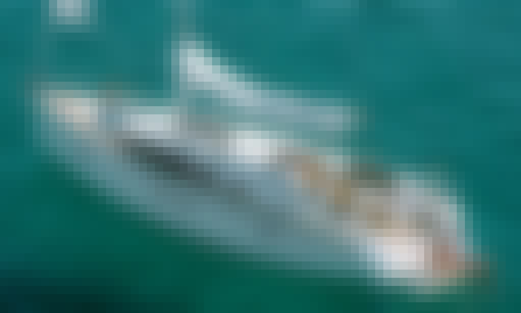 "Charter 46ft ""Libert"" Bavaria Cruising Monohull in Palma, Spain"