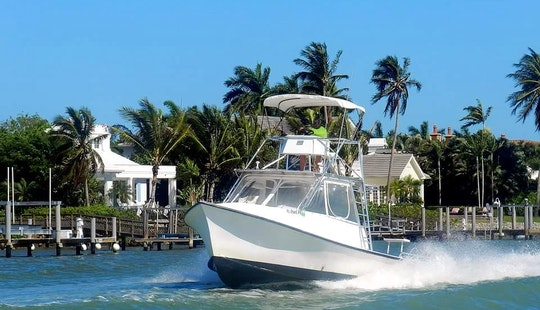 Fishing Charter On 31ft Sportfishing Boat In Naples, Florida
