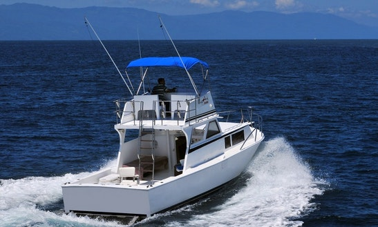 36ft Custom Made Motor Yacht Rental In Vallarta, Mexico