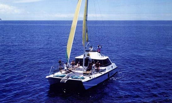 42' Sailing Catamaran Charter In Honolulu, Hawaii
