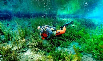 See the Underwaterworld! Book Diving Trips and Lessons in Oberösterreich, Austria