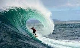 Enjoy Surf Board Rental & Safaris in Zanzibar, Tanzania