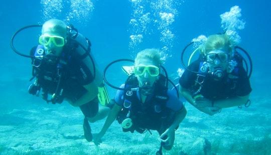 Enjoy Diving Courses In Paralimni, Protaras