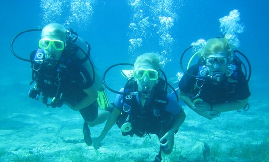 Enjoy Diving Courses In Paralimni, Protaras