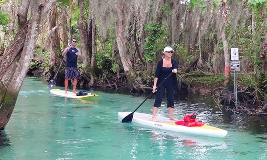 Enjoy Stand Up Paddleboard Lessons And Tours In Orlando, Florida