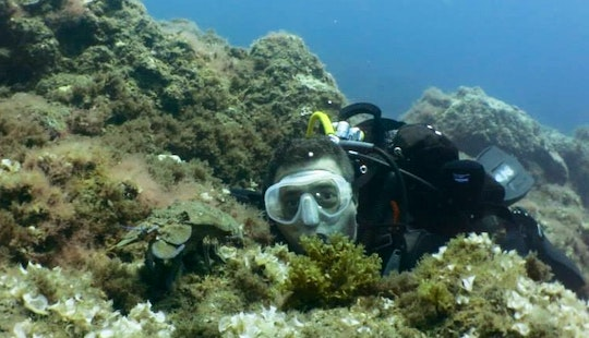 Enjoy Diving Lessons And Tours In Canarias, Spain